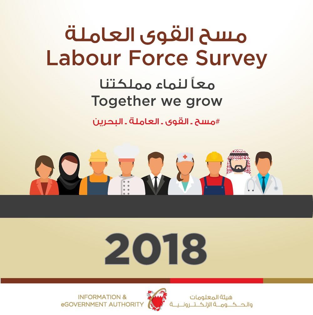 هيئة المعلومات تواصل تنفيذ مسح القوى العاملة 2018