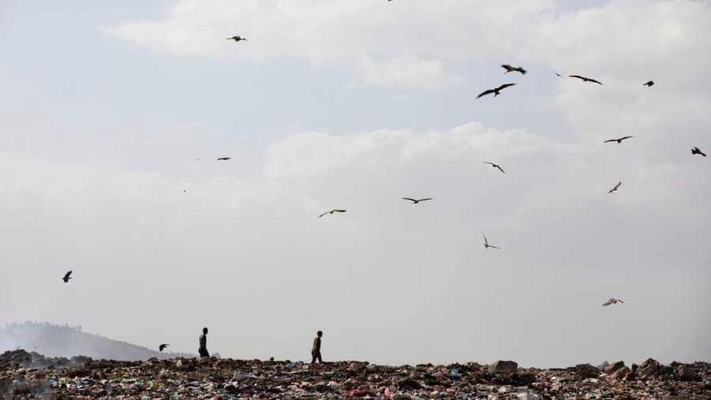 نفايات إثيوبيا تتحول إلى طاقة ومياه نظيفة وطوب!