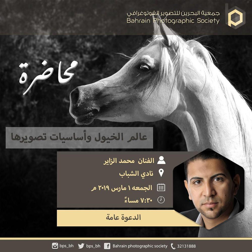 جماليات الخيل العربي وأساسيات تصويرها