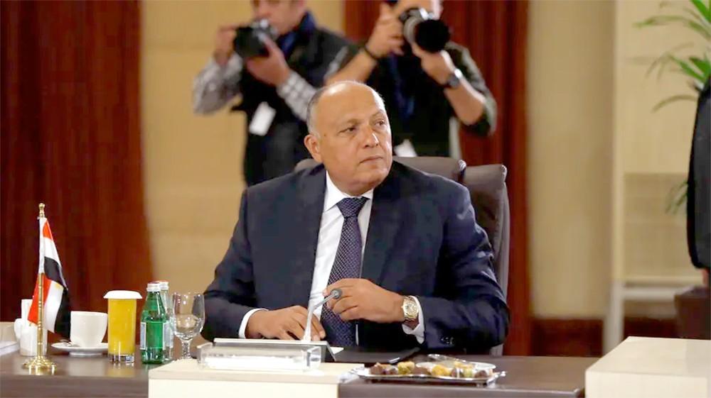 اجتماع وزاري مصري تونسي جزائري حول ليبيا